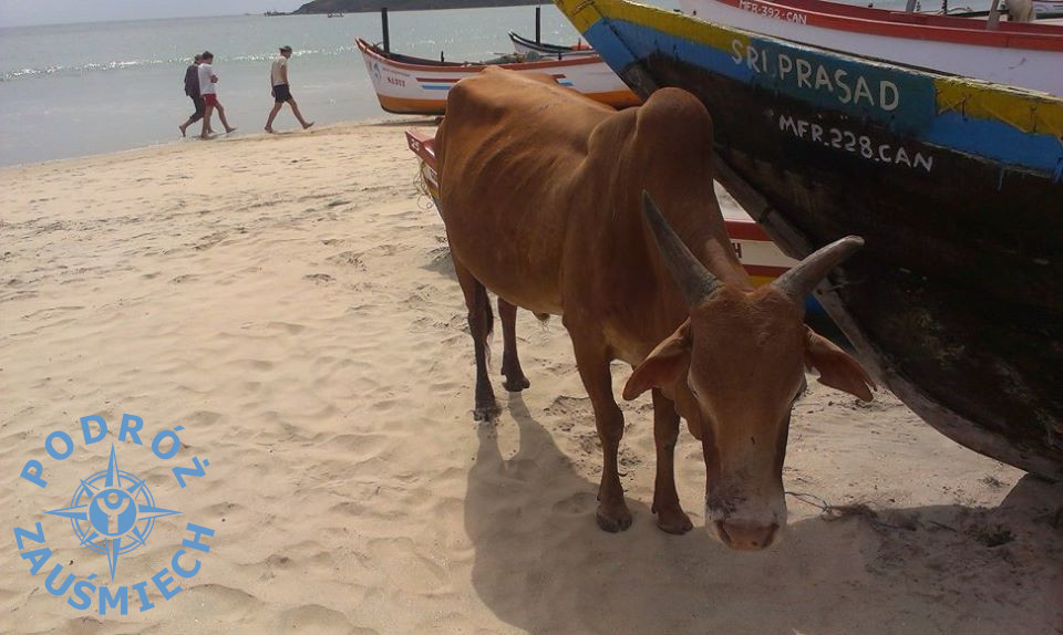 Goa Indie