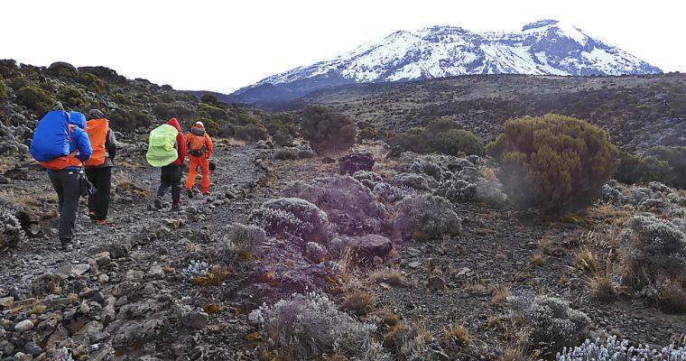 Kilimandżaro – zdjęcia