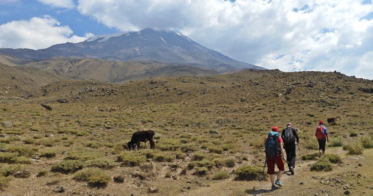 Ararat zdjęcia